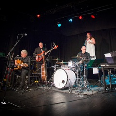 The Tapestry Band Tribute Band in Hampshire