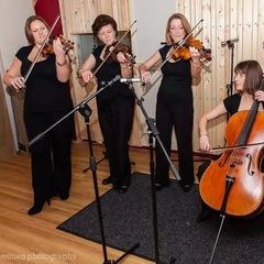 Parisi String Quartet String Quartet in the UK