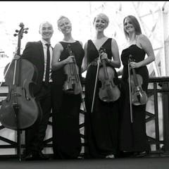 Vaults Quartet String Quartet in London
