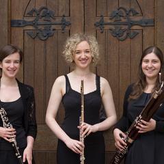 Ulmus Trio Trio in Birmingham