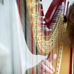 Sally Jenkins Harpist in Cardiff