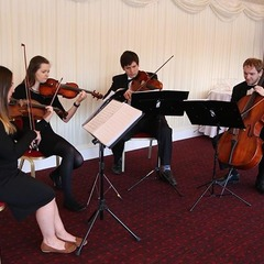Egmont Quartet String Quartet in Sheffield