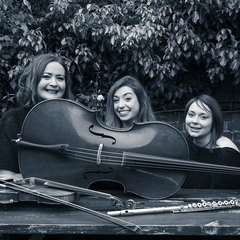 Trifonics String Quartet in London