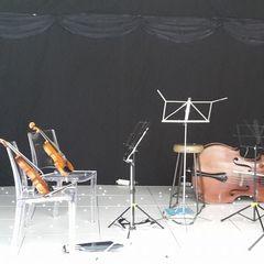 Sophistication Strings String Quartet in Birmingham