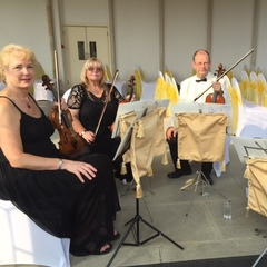 A Touch of Class String Quartet String Quartet in the UK