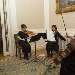 Ariella Strings  - String Quartet, String Trio and String Duo String Quartet in the UK