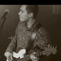 Josh Fawn Guitarist in York