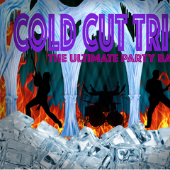 Cold Cut Trio Cover Band in Lincoln