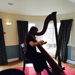 Annie Walker Harpist in Leicester