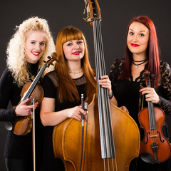 Pure Dynamic Strings String Quartet in Glasgow