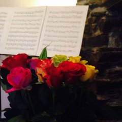 Occasion Strings String Quartet in the UK