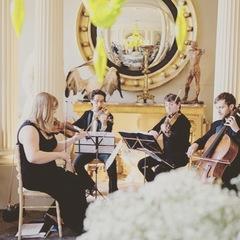Vyne String Quartet Violinist in Worcestor