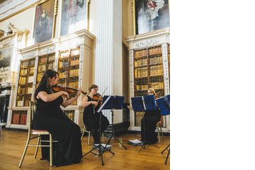 Vyne String Quaret String Quartet in Birmingham