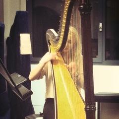 Morwenna Maclean Harpist in the UK