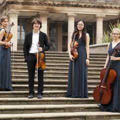 the Continental Quartet String Quartet in Birmingham