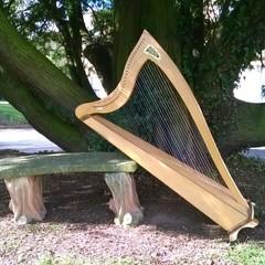 Aelvenharp - Alison Eve Harpist in the UK