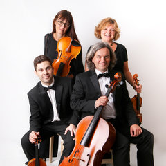 The Element String Quartet and Trio and Duo String Quartet in the UK