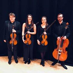 Voci String Quartet String Quartet in Leeds