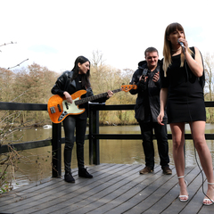 The Velvet Band Trio in Birmingham