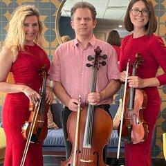 Felicità String Quartet in the UK