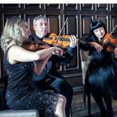 Aurora Strings String Quartet in Newcastle