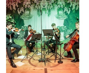 The Ivy  Quartet String Quartet in London