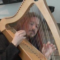 Carol Walker Harpist in the UK