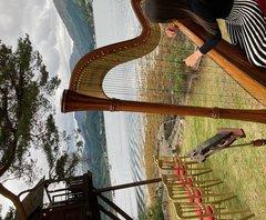 Aimee Clark Harpist in Glasgow
