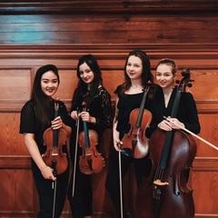 Goldhawk Quartet String Quartet in London