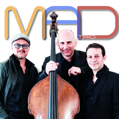 MAD Trio Jazz Band in London