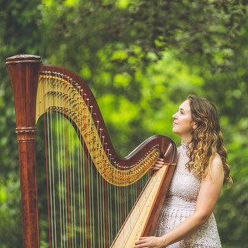 Rebecca Toal's profile picture