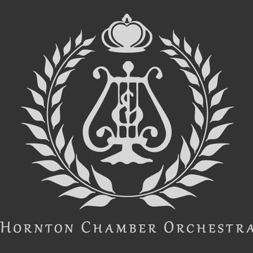 Hornton Chamber Orchestra's profile picture