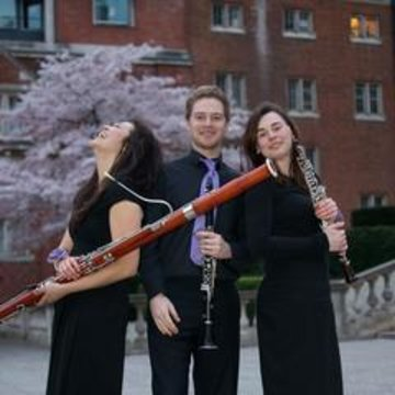 Gelachter Trio's profile picture