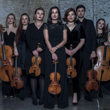 City String Ensemble's profile picture