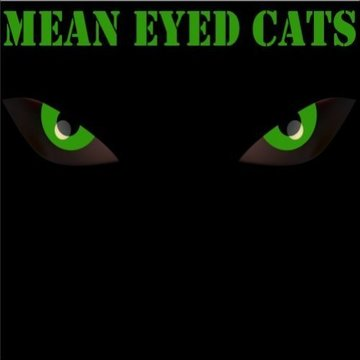 Mean Eyed Cats's profile picture