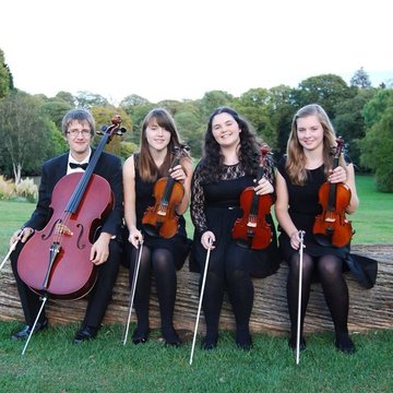 Primo String Quartet's profile picture