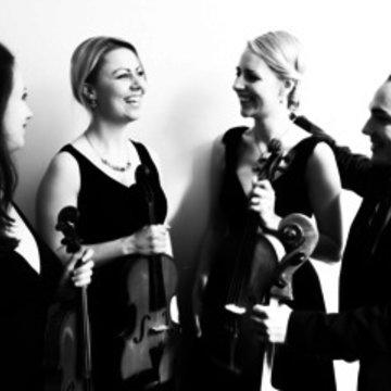 Vaults String Quartet's profile picture