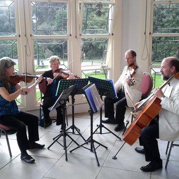 Keysworth String Quartet's profile picture