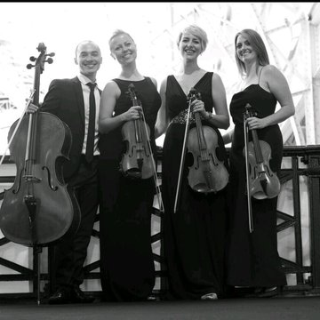 Vaults Quartet's profile picture