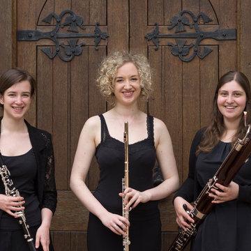 Ulmus Trio's profile picture