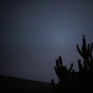 William Stewart's profile picture