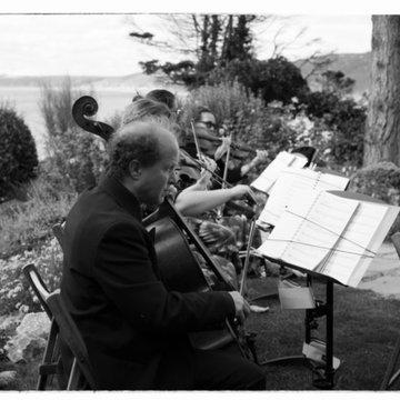 4tissimo String Quartet's profile picture