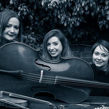 Trifonics Trio's profile picture
