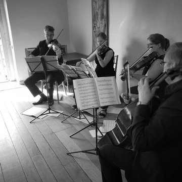 Sonore String Quartet's profile picture