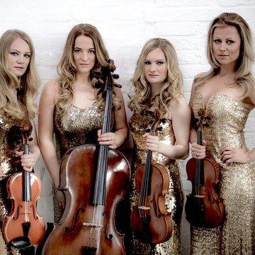 Gold Quartet's profile picture