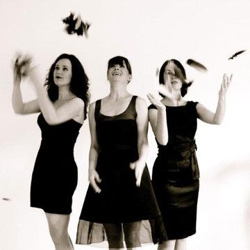 Songbird Trio's profile picture