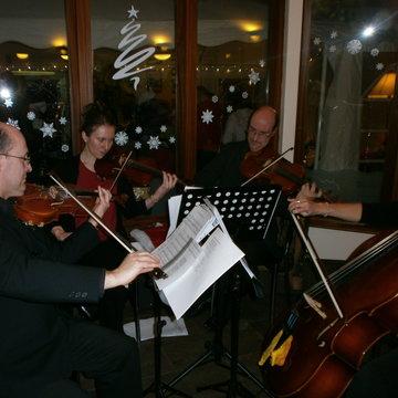 Amoroso String Quartet's profile picture