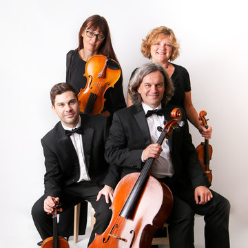The Element String Quartet, Trio & Duo's profile picture