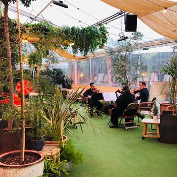 The Ebor Quartet's profile picture