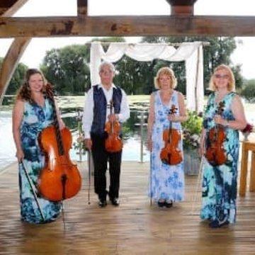Scherzando Strings's profile picture